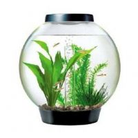 Biorb HALO 15 Litre - Tropical Aquarium Heater Tropical Fish Tank